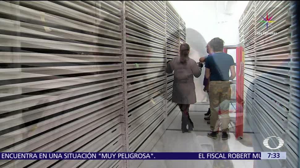 Tesoros Escondidos Museo Nacional De Antropologia Salas De Exhibicion
