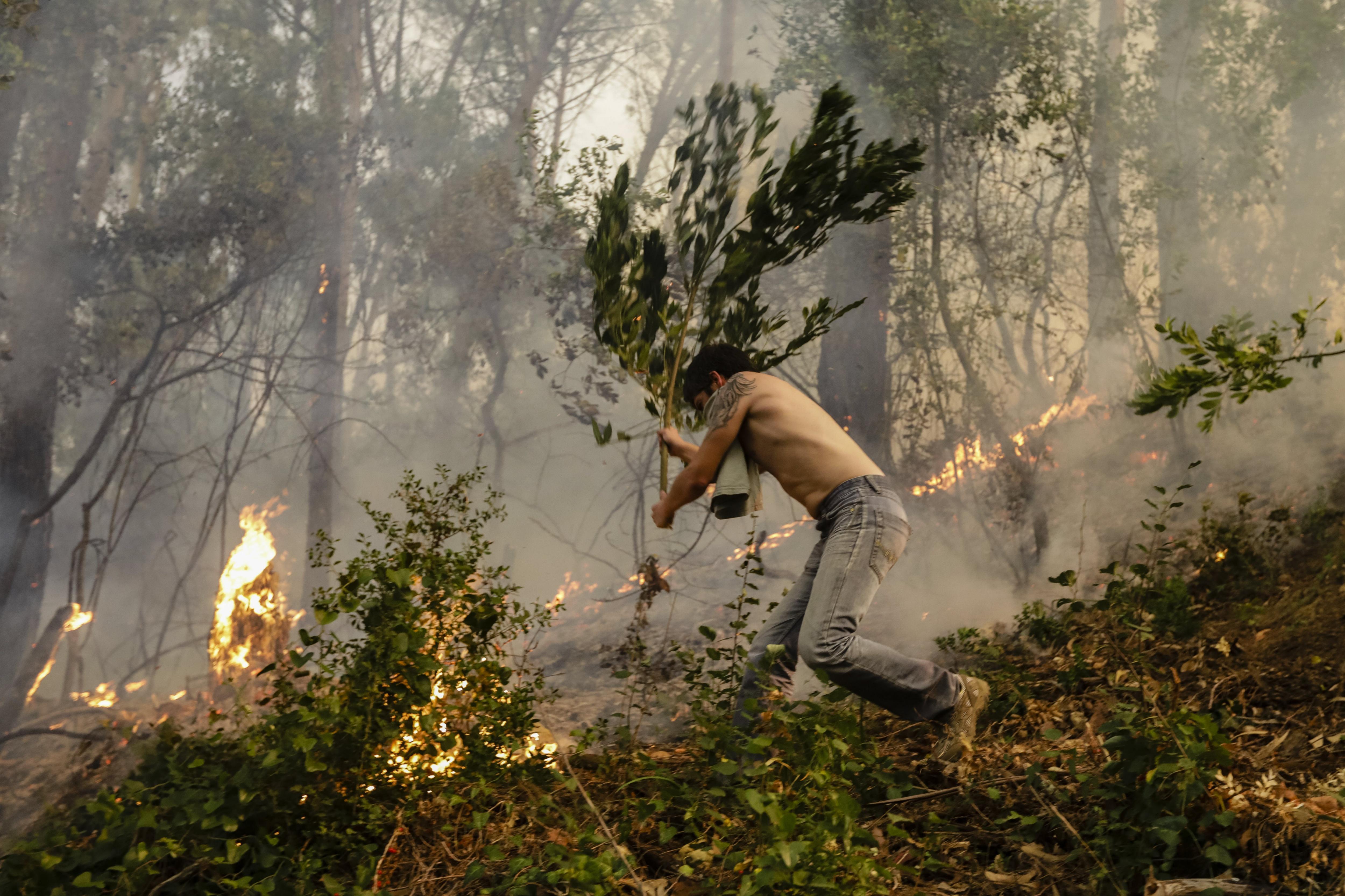 Miles de bomberos luchan contra siete grandes incendios en Portugal