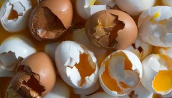 Dos detenidos en Holanda por el escándalo de los huevos contaminados
