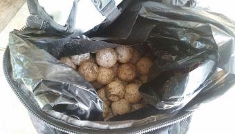 policias federales aseguran huevos y loros en oaxaca
