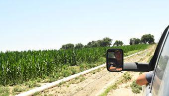 gricultura ganadora TLCAN Lighthizer