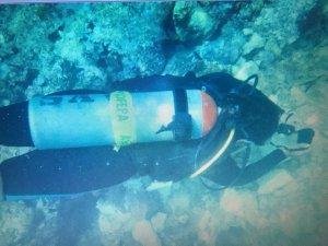 Causa buque 'Antares' dano en Arrecife Tuxpan