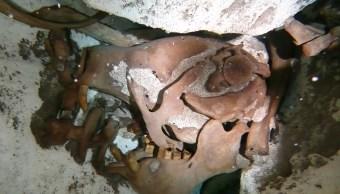 Cráneo de perezoso gigante recuperado de un cenote en Quintana Roo