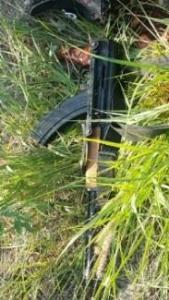 Policias aseguran camionetas y arma en tamaulipas