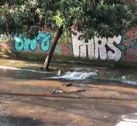 Reparan fuga de agua en la delegación Tlalpan