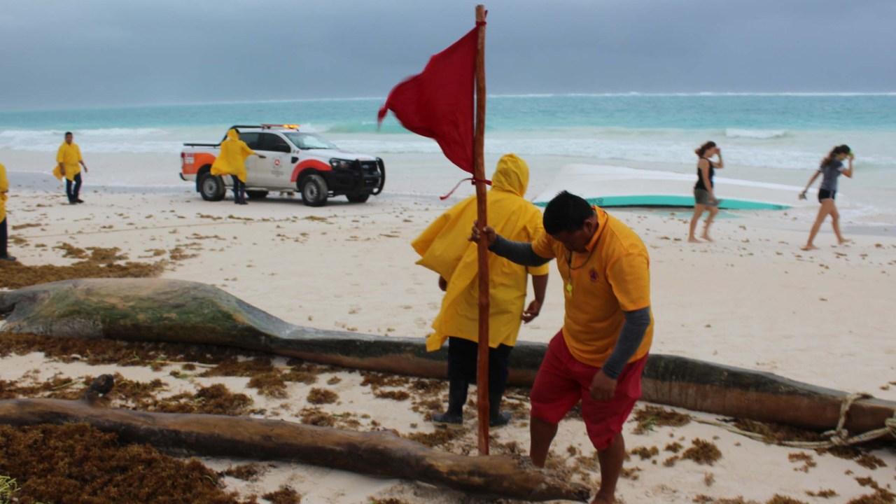 'Franklin' avanza hacia Golfo de México, donde podría convertirse en huracán: Conagua