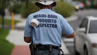 Primer caso zika transmitido sexualmente Florida
