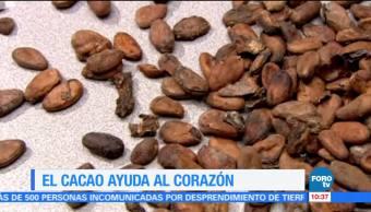 Extra Cacao Ayuda Corazon Científicos Del Ipn