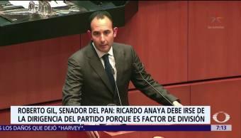 Crisis PAN Roberto Gil Zuarth Despierta