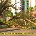Irma deja en zona de desastre a Florida