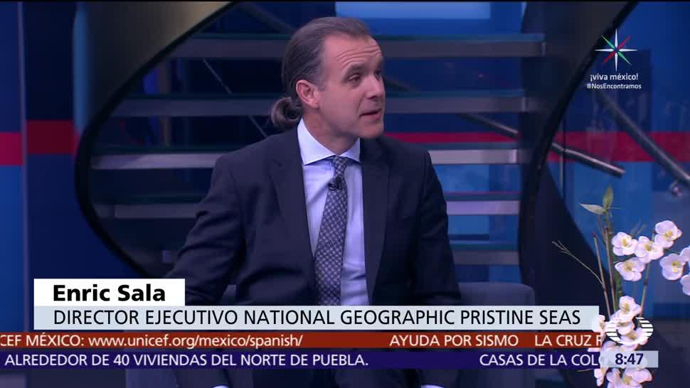 Mexicanos National Geographic Trabajan Equipo