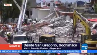 Binomios Caninos Desplegados Derrumbe San Gregorio Xochimilco