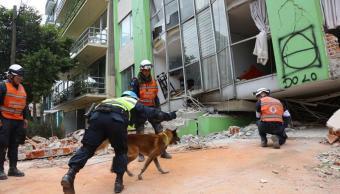 Reportan 28 edificios derrumbados en la Cuauhtémoc tras sismo