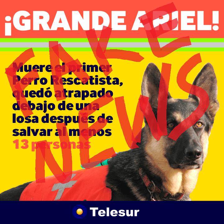 Fake news que se viralizaron redes sociales sismo México