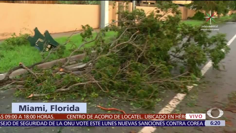 Huracán Irma Arranca Palmeras Letreros
