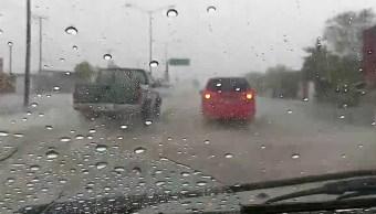 Temporada de lluvias favorece al cultivo y ganado en Sonora