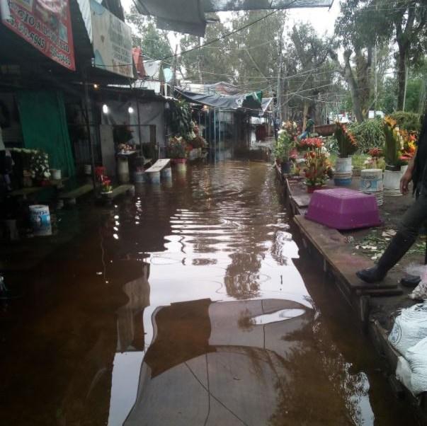 Se Inunda El Mercado De Plantas Y Flores De Cuemanco