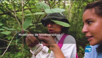 Sistema Monitoreo Especies Peligro Facultad De Veterinaria Especialistas