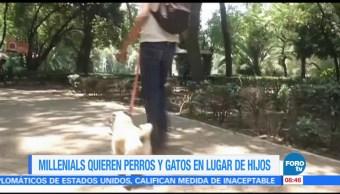 Extra, Extra: Millennials quieren perros y gatos en lugar de hijos