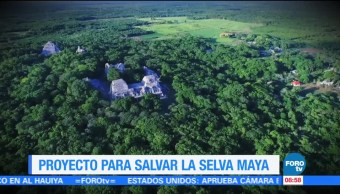 Proyecto para salvar la selva maya