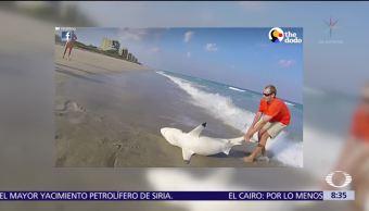 Hombre rescata a tiburón y lo regresa al mar