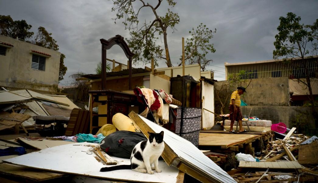 Apoyo de EU a Puerto Rico por huracanes no es eterno: Trump