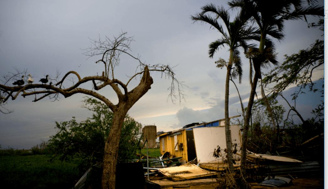 Daños en Puerto Rico a causa del huracán 'María'