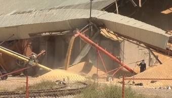 Falta de lluvias afecta la producción agrícola en Sonora