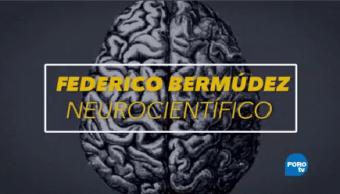 Federico Bermúdez Neurólogo Unam Doctor Cerebro Humano