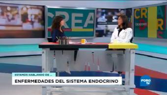Funcionamiento Sistema Endocrino Victoria Mendoza Facultad Medicina