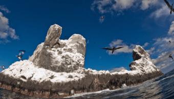 Gaviotas sobrevuelan roca del Parque Nacional de Revillagigedo en el Pacífico mexicano