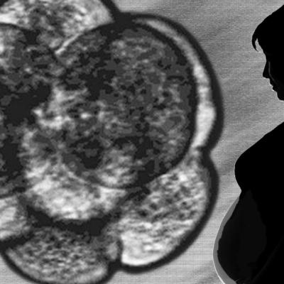 Mujer dará a luz a nieto, primer vientre de alquiler de Portugal
