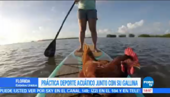 Joven Practica Paddle Board Gallina Florida