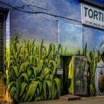 Tortillería_chinantla