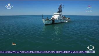 Corrupción, pobreza, política, las otras redes que afectan a la vaquita marina