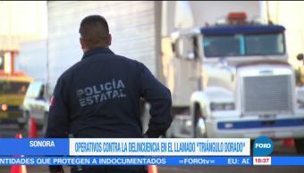 Operativos contra la delincuencia en el Triángulo Dorado