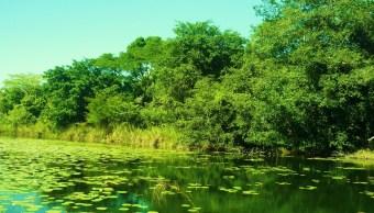 Ambientalistas recorrerán Biósfera de Los Petenes en Campeche