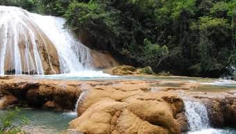 Cascadas de Agua Azul recuperan 90% del caudal de su afluente