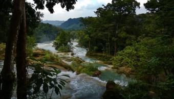 Se recupera afluente de Cascadas de Agua Azul en Chiapas