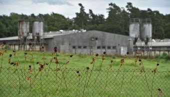 El Gobierno checo compra la granja porcina de Lety, lugar donde hubo un campo de concentración para gitanos en la II Guerra Mundial. (Sitio oficial/ČTK)