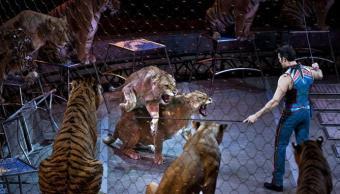Irlanda prohíbe uso animales salvajes circos