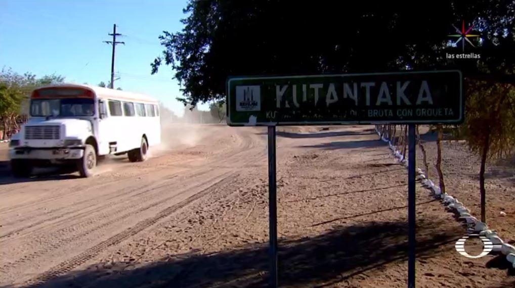 indigenas caminan 30 kilometros obtener agua navojoa sonora