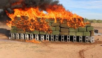La PGR incinera de narcóticos en Sonora