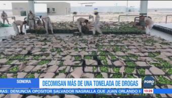 Decomisan más de una tonelada de droga en Sonora entre limones