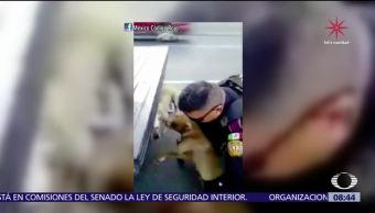 Policía de Monterrey rescata a dos perros