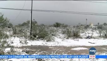 Se mantienen cerradas las carreteras en Nuevo León por nevadas