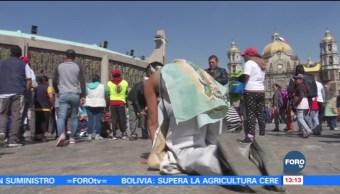Peregrinos Agradecen Peticiones Virgen Guadalupe Miles