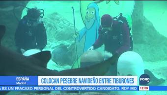 Zoológico de Madrid coloca nacimiento en estanque de tiburones