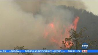 Más de 97 mil hectáreas de bosques consumidas por incendio 'Thomas'
