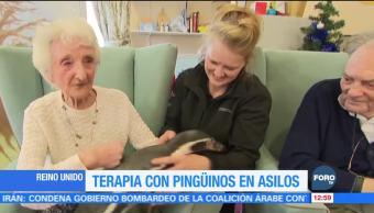 Dan terapia con pingüinos a los ancianos en asilos británicos